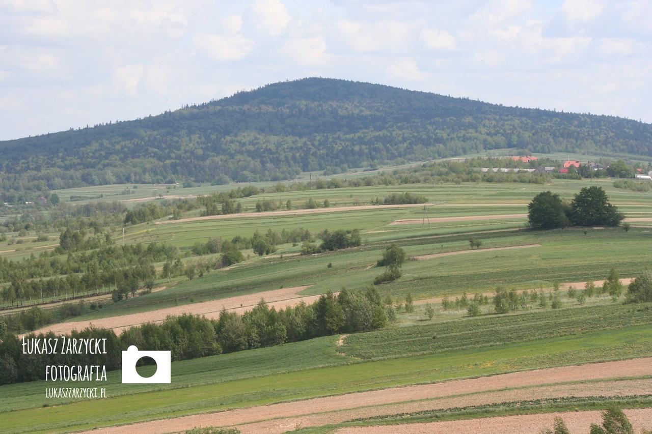 Radostowa, 13.05.2007 r. Widok na Gory Swietokrzyskie (Lysica - 612 m n.p.m.). Fot. Lukasz Zarzycki / lukaszzarzycki.pl